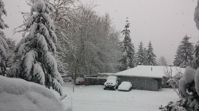 2017-snow
